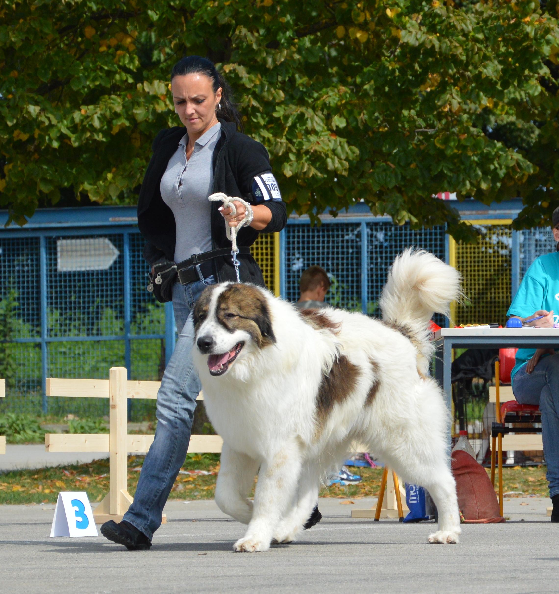 19.09.2015 Karlovac 142